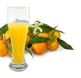 Image of juicy and tangerine Stock Photo