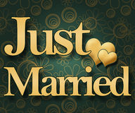 Just Married - Green Floral Royalty Free Stock Images