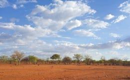 Kalahari Stock Images