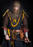 Image of knight. Knight is holding a club Royalty Free Stock Image