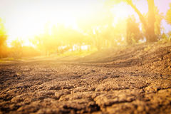 Image of land with dry and cracked ground. Global warming concept Royalty Free Stock Images