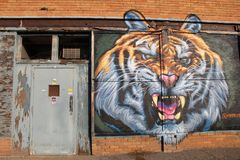 Interesting street art with large, angry lion`s head on old brick wall of abandoned building, Rochester, New York, 2017. Image of large lion`s head with angry Royalty Free Stock Photos