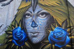 Impressive street art with face of beautiful woman painted on old brick wall, Rochester, New York, 2017 stock image