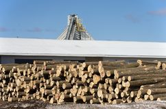 Stack of logs by sawmill. Image of a large pile of logs next to a sawmill in winter Royalty Free Stock Photography