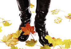 Image of leather boots Stock Photo