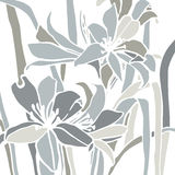 Image of lilies Stock Photo