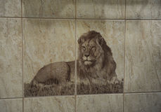 Image of lion on the tile. On the wall Stock Image