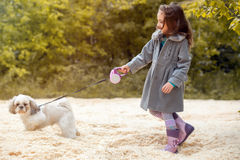 Image of little fashionista walking with dog Royalty Free Stock Photography