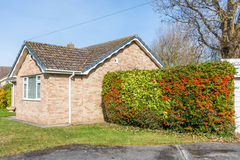 Image of little house. It is a small house, bordered by a hedge in several colors Stock Photography