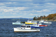 Maine Boats. Image of lobster boats at anchor on an autumn day in Bar Harbor, Maine.  Represents an industry, a popular tourist location, and a state Stock Photography