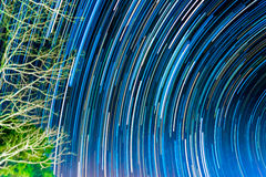 image of Long exposure star trails. Royalty Free Stock Images