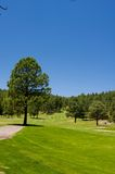 An image of a lush Arizona golf course Royalty Free Stock Photo
