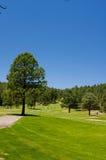 An image of a lush Arizona golf course royalty free stock photo