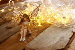 Image of magical little fairy in the forest next to old story book. vintage filtered Stock Images