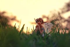 Image of magical little fairy in the forest at sunset. Royalty Free Stock Image