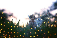 Image of magical little fairy in the forest at sunset. Stock Photos