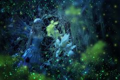 image of magical little fairy in the night forest. Royalty Free Stock Image