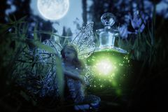 image of magical little fairy sitting in the night forest. Stock Photos