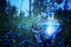 image of magical little fairy sitting in the night forest. Royalty Free Stock Images