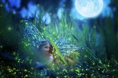 image of magical little fairy sitting in the night forest. Royalty Free Stock Photography