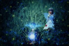 image of magical little fairy sitting in the night forest. Stock Photography