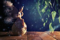 image of magical little fairy sitting over the stone. royalty free stock images