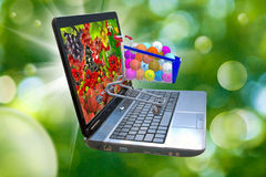 Image of many of berries on a laptop screen, stylized vitamins in the food trolley Royalty Free Stock Photo