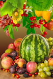Image of many fruits close-up Royalty Free Stock Images