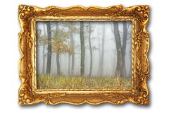 Image with misty forest on ancient picture frame Royalty Free Stock Image