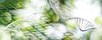 Image of molecular structure and chain of dna on a green background closeup Stock Images