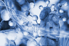 Image of molecular structure, DNA chains and ancient stone sculptures Royalty Free Stock Photography