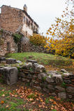 Image of  monastery of St. Luke near Delphi Stock Photos