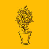Image money tree in a pot. Simple drawing lines. Metaphor money growing on tree Stock Images