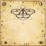 Image of a moth. royalty free illustration