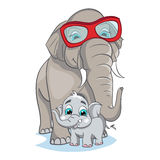 Image of mother elephant with baby elephant Royalty Free Stock Photo