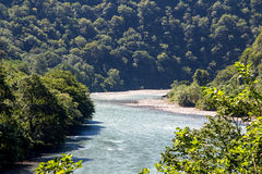 Image of mountain river hidden in green trees Stock Image