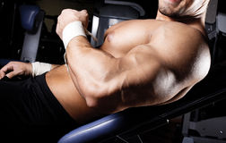 Image of muscluar body Stock Images