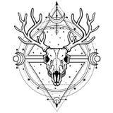 Image mystique du crâne un cerf commun à cornes, la géométrie sacrée, symboles de la lune illustration stock