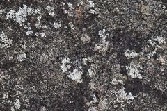 Image of natural stone texture background. Rock floor Stock Photos