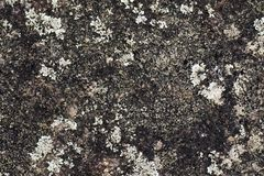 Image of natural stone texture background. Rock floor Stock Photo