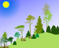 Image of Nature. Tree Silhouette. Eco banner. Vector Illustration Royalty Free Stock Photos