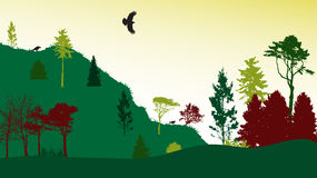 Image of Nature. Tree Silhouette. Eco banner Stock Photo