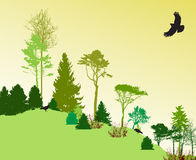 Image of Nature. Tree Silhouette. Eco banner Royalty Free Stock Photos