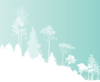 Image of Nature. Tree Silhouette. Eco banner. Vector Illustration Royalty Free Stock Photography
