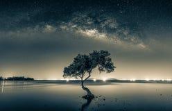Image noire et blanche de ciel nocturne avec les étoiles et l'homme de silhouette photo stock
