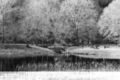 Image noire et blanche de l'aire de pique-nique chez Smith Mountain Hydroelectric Dam - 2 photographie stock