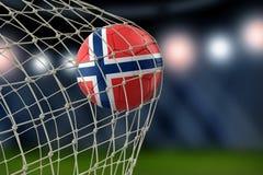 Norwegian soccerball in net. Image of Norwegian soccerball in net Royalty Free Stock Images