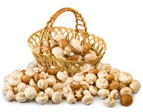 Free Image Of Champignons In Basket Royalty Free Stock Image - 52281076