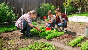 Free Image Of Family With Children Working In Garden Stock Photos - 115048863