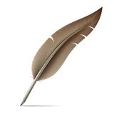 Image Of Feather Pen On White Background Stock Images